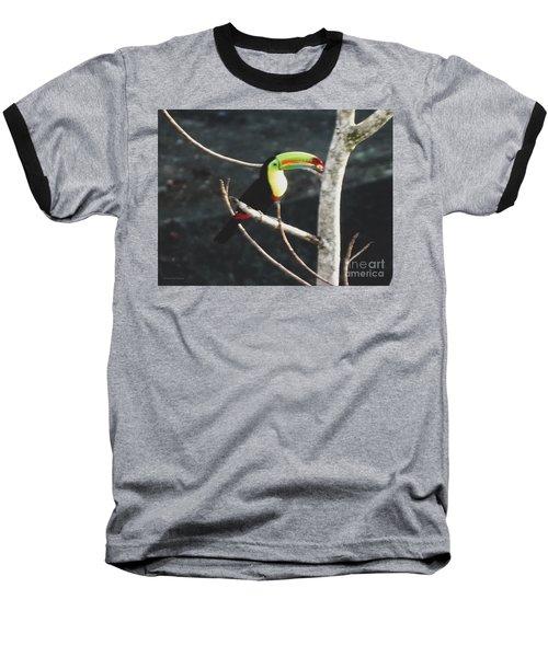 Keel-billed Toucan Baseball T-Shirt