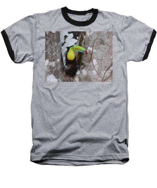 Keel-billed Toucan #2 Baseball T-Shirt