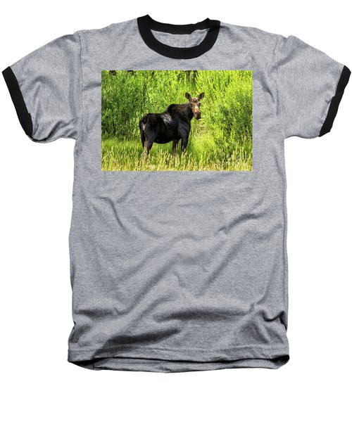 Keep Your Distance Wildlife Art By Kaylyn Franks Baseball T-Shirt