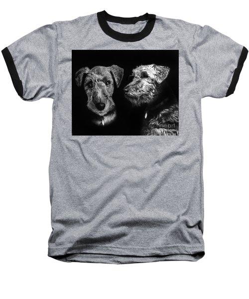 Keeper The Welsh Terrier Baseball T-Shirt by Peter Piatt