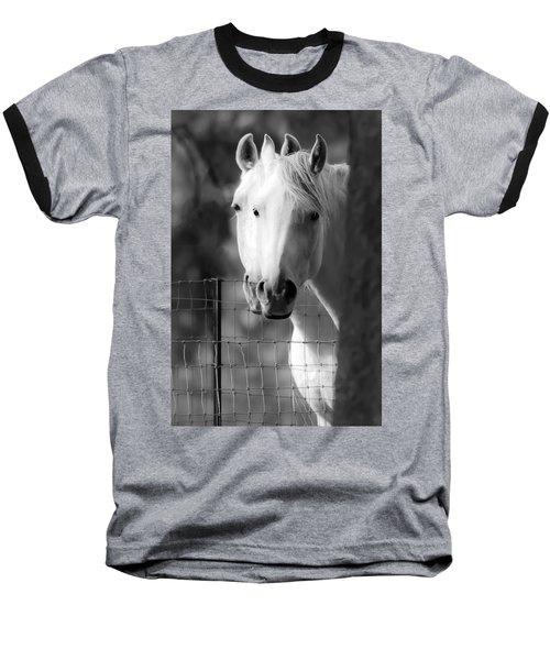 Keeping Their Eyes On Us Baseball T-Shirt by Wes and Dotty Weber