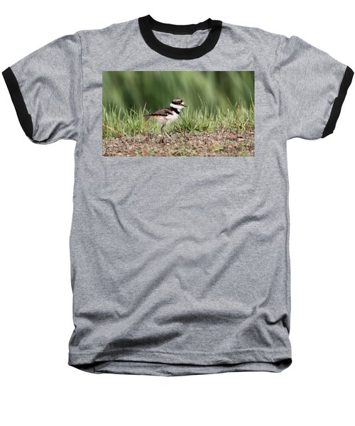 Killdeer - 24 Hours Old Baseball T-Shirt