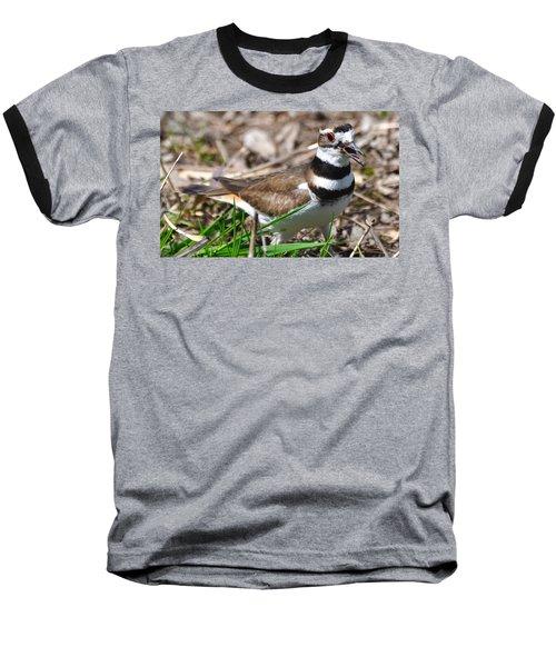 Killdeer Mother Baseball T-Shirt