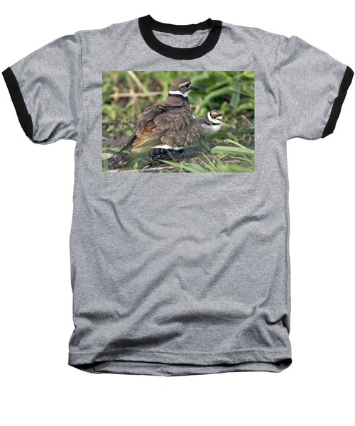 Killdeer With Chicks Baseball T-Shirt by Craig Strand