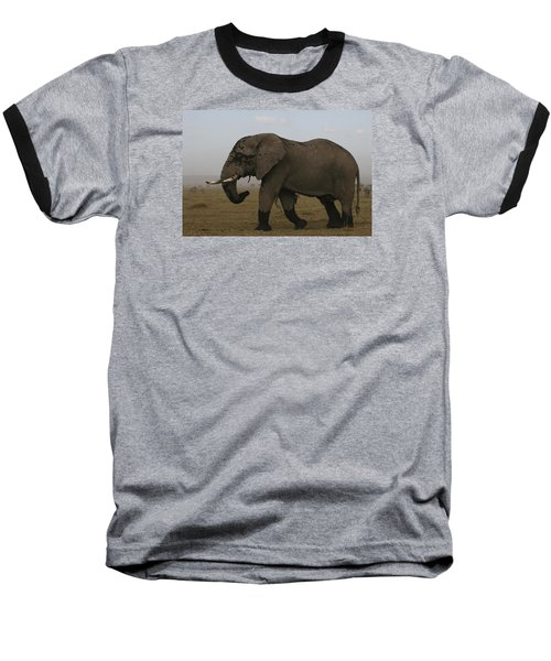 Baseball T-Shirt featuring the photograph King Of The Savannah by Gary Hall