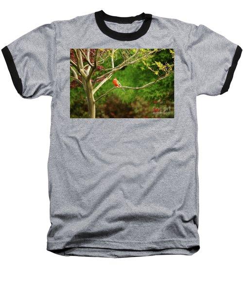 King Parrot Baseball T-Shirt by Cassandra Buckley