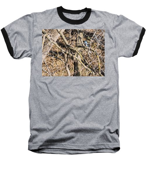 Baseball T-Shirt featuring the photograph Kingfisher Hunting by Edward Peterson
