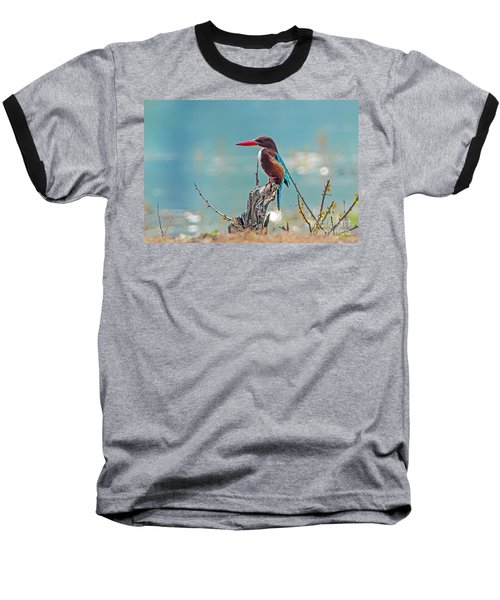 Kingfisher On A Stump Baseball T-Shirt