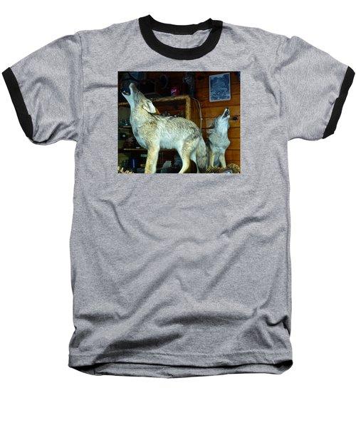 Kings Canyon Lodge Coyotes Baseball T-Shirt by Amelia Racca
