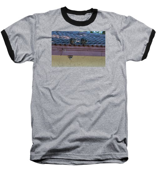 Kits On The Roof Baseball T-Shirt by Dorothy Cunningham