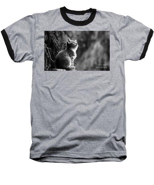 Kitten In The Tree Baseball T-Shirt