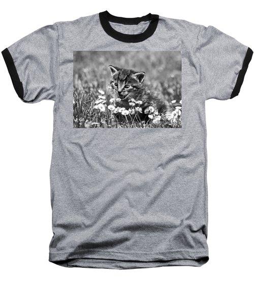 Kitten With Daisy's Baseball T-Shirt