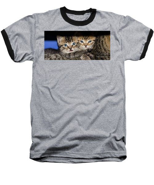 Kittens In The Shadow Baseball T-Shirt
