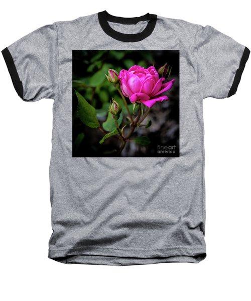 Knockout Rose Baseball T-Shirt
