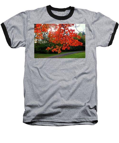 Knox Park 8444 Baseball T-Shirt