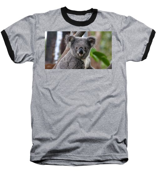 Koala Bear 7 Baseball T-Shirt by Gary Crockett
