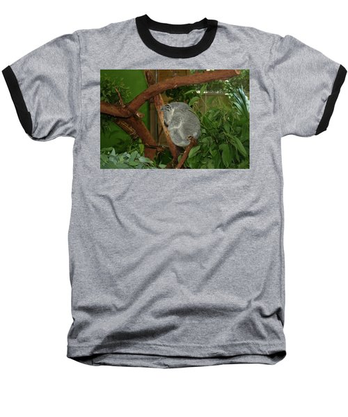 Baseball T-Shirt featuring the photograph Koala by Cathy Harper