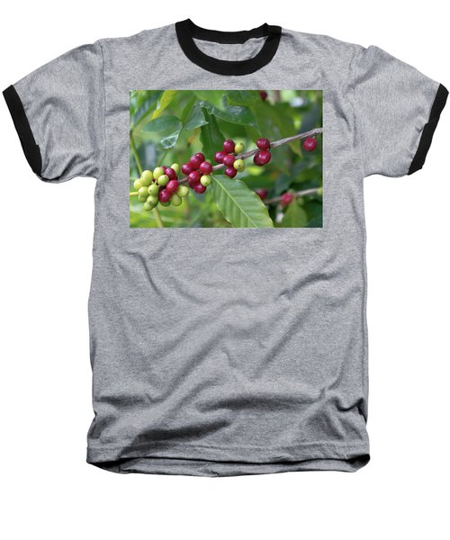 Kona Coffee Cherries Baseball T-Shirt