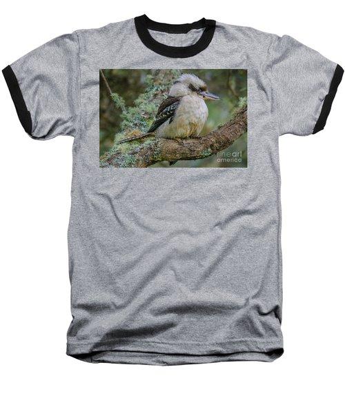 Kookaburra 4 Baseball T-Shirt