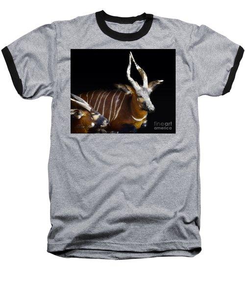 Kudo Resting Baseball T-Shirt by Melissa Messick