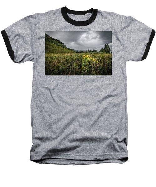 La Plata Wildflowers Baseball T-Shirt