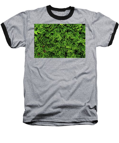 Life In Green Baseball T-Shirt by Dorin Adrian Berbier