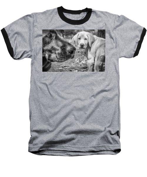 Lab Love Baseball T-Shirt