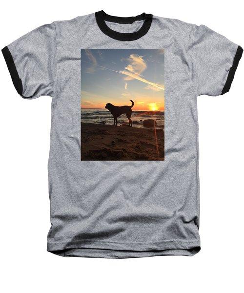 Baseball T-Shirt featuring the photograph Labrador Dreams by Paula Brown