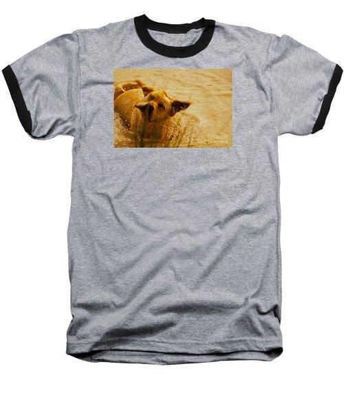 Labrador Retriever Baseball T-Shirt