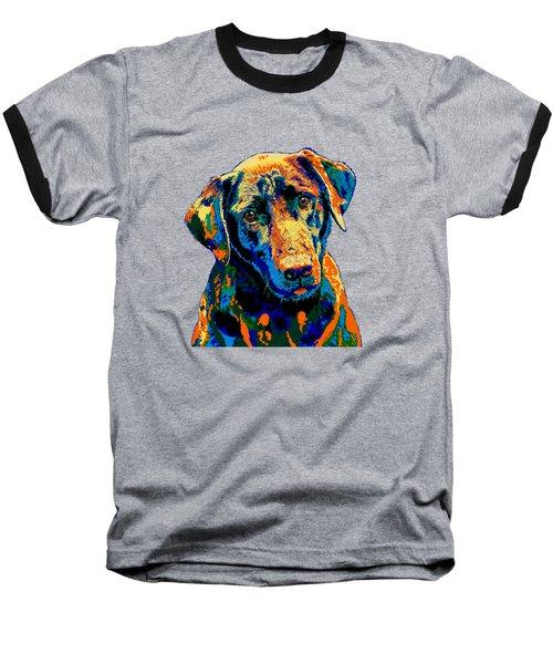 Labrador Retriever Of Many Colors Iv Baseball T-Shirt