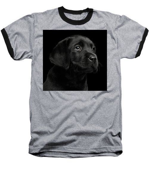 Labrador Retriever Puppy Isolated On Black Background Baseball T-Shirt