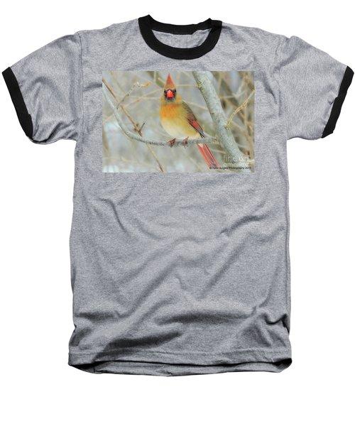 Lady In Waiting Baseball T-Shirt
