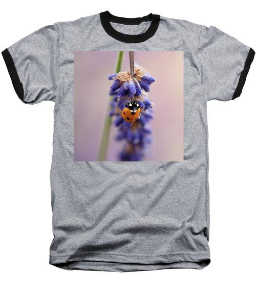 Ladybird On Norfolk Lavender  #norfolk Baseball T-Shirt