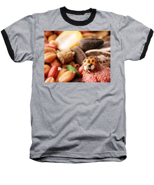 Lucky Ladybug At The Park Baseball T-Shirt by Belinda Lee