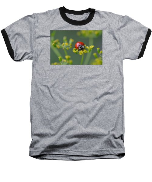 Ladybug In Red Baseball T-Shirt by Janet Rockburn