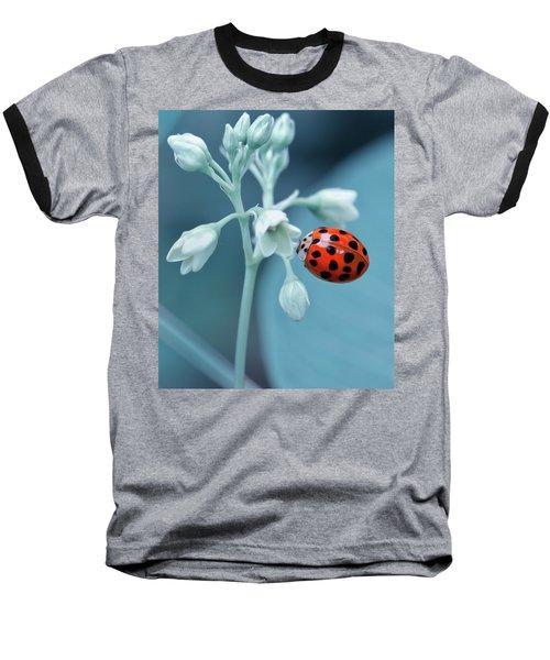 Ladybug Baseball T-Shirt