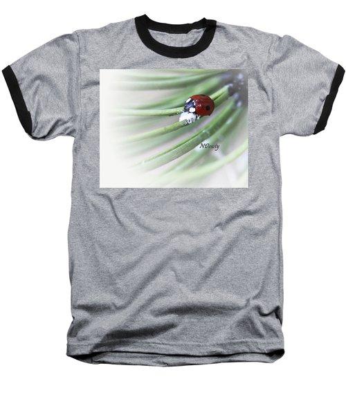Ladybug On Pine Baseball T-Shirt