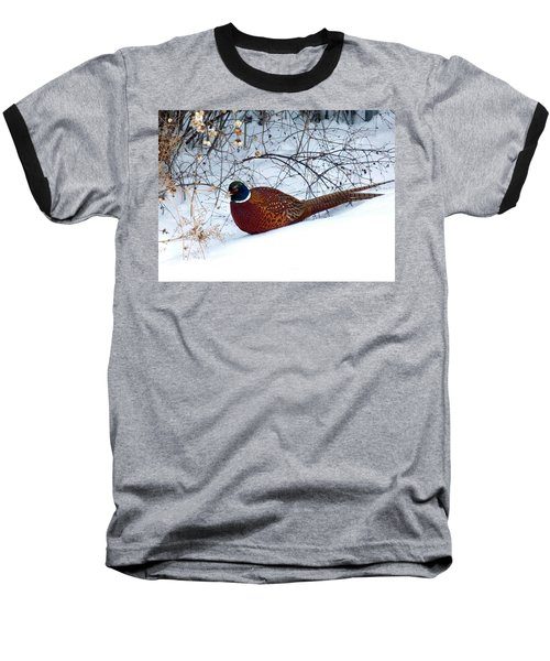 Baseball T-Shirt featuring the photograph Lake Country Pheasant by Will Borden