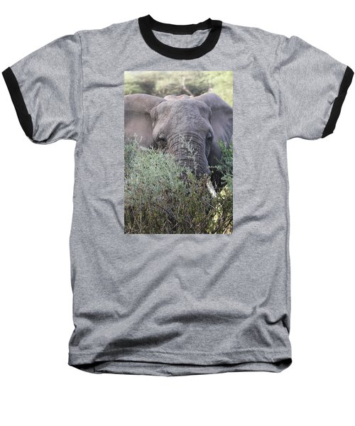 Baseball T-Shirt featuring the photograph Lake Manyara Elephant by Gary Hall