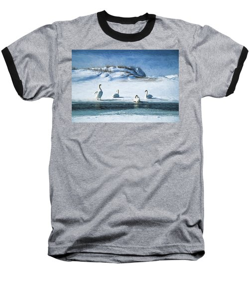 Lake Michigan Swans Baseball T-Shirt