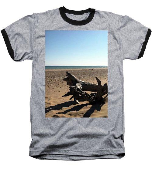 Lake Superior Driftwood Baseball T-Shirt