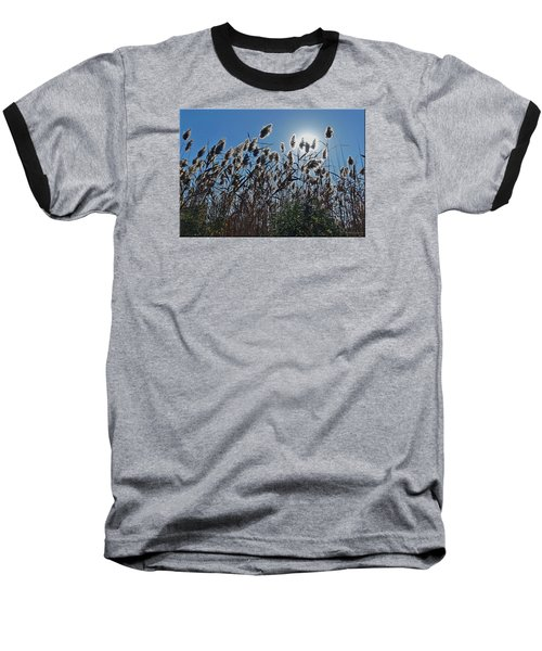 Lakeside Plants Baseball T-Shirt