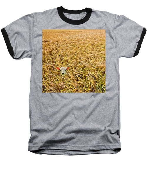 Lamb With Barley Baseball T-Shirt