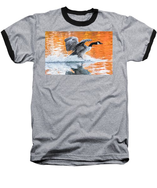 Landing Baseball T-Shirt by Parker Cunningham
