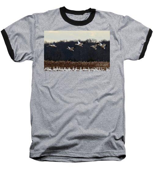 Baseball T-Shirt featuring the photograph Landing by Tamera James
