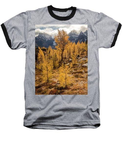 Larch Family Baseball T-Shirt