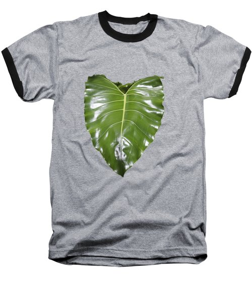 Large Leaf Transparency Baseball T-Shirt