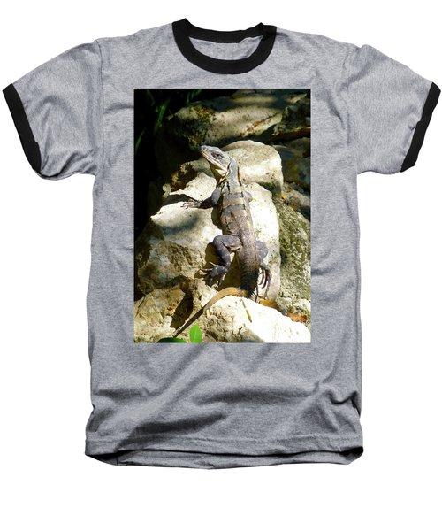 Baseball T-Shirt featuring the photograph Large Lizard M by Francesca Mackenney