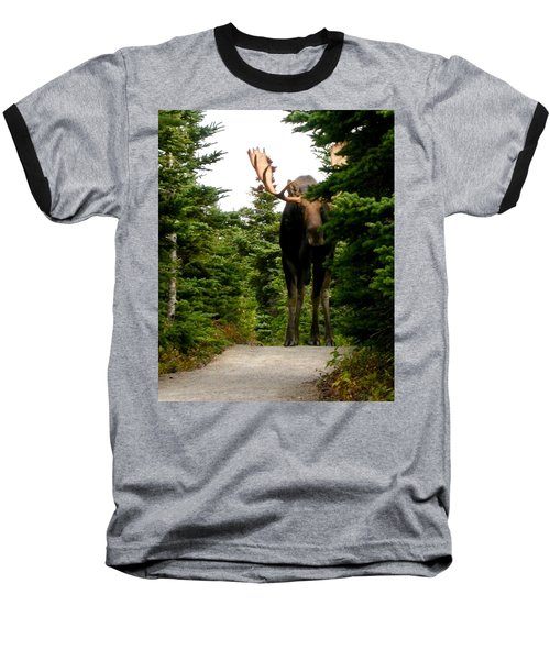 Large Moose Baseball T-Shirt