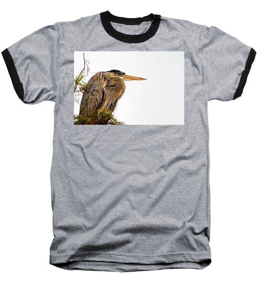 Laser Gaze Baseball T-Shirt by Cyndy Doty